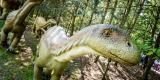 Dino25.jpg